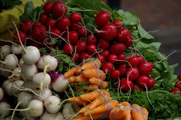 carrots & turnips & radishes